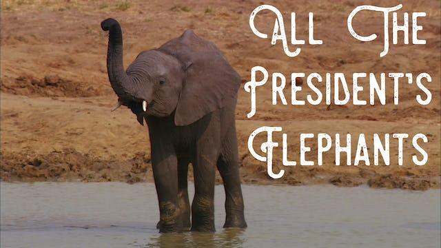 All The President's Elephants