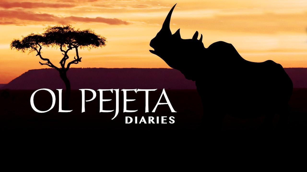 Ol Pejeta Diaries