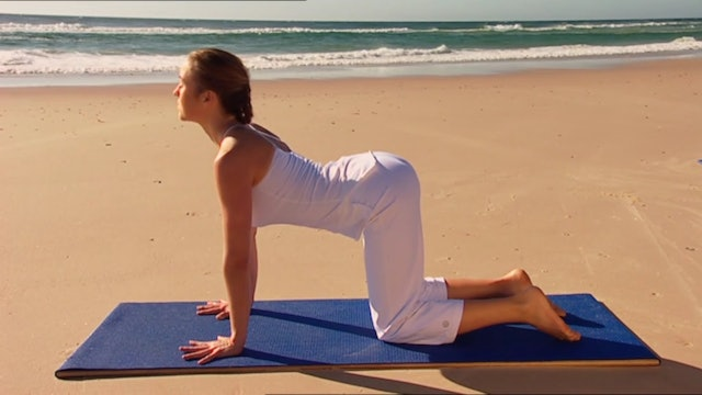 Radiance Yoga - Vinyasa Stretch and Open - 10 Minute Class