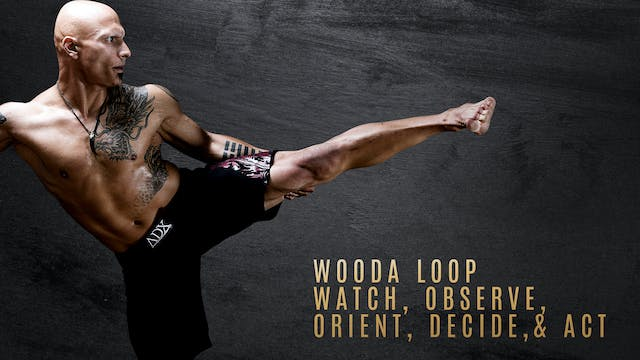 WOODA Loop - Watch, Observe, Orient, ...