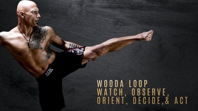 WOODA Loop - Watch, Observe, Orient, Decide, & Act (Attack)