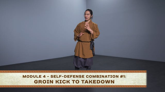 Self-Defense Combination #1: Groin Ki...
