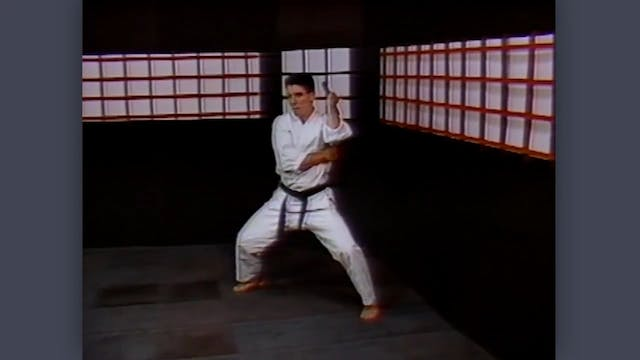 Nunchaku: Classic Fumio Demura Kobudo Video Review: Kata