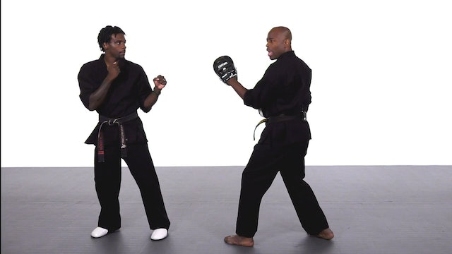Jadi Tention - Hook Round Kick Progression - Part 3