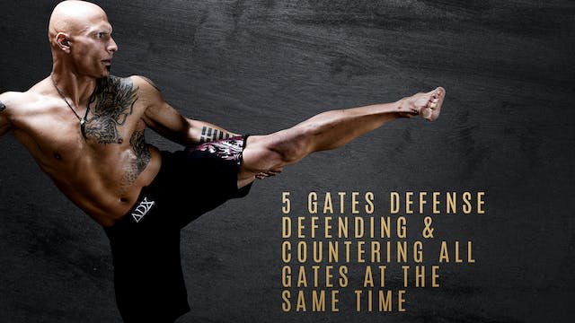 5 Gates Defense Defending & Counterin...