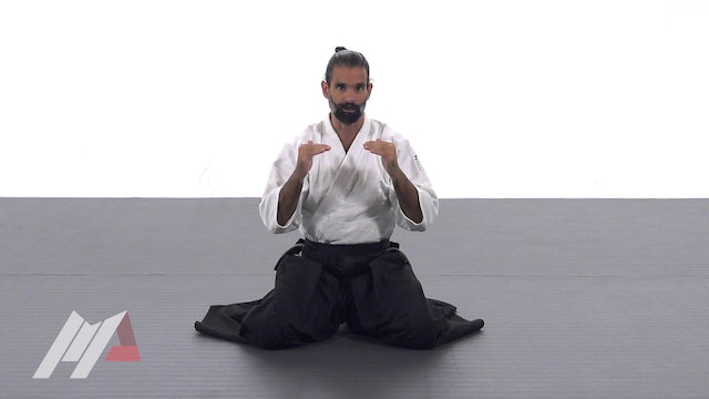 Guillermo Gomez - Introduction to Aikido Practice