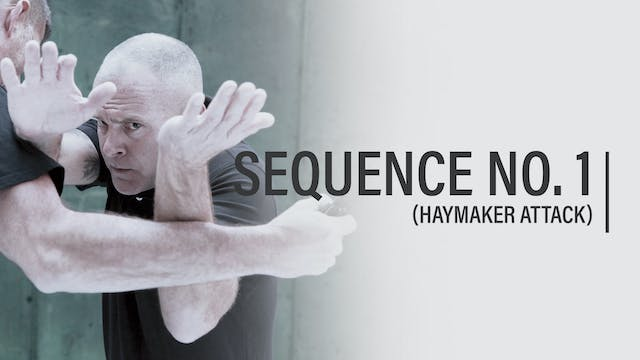 Episode 16 - Sequence No. 1 (Haymaker Attack)