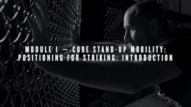 Module 1 — Core Stand-Up Mobility: Positioning for Striking: Introduction
