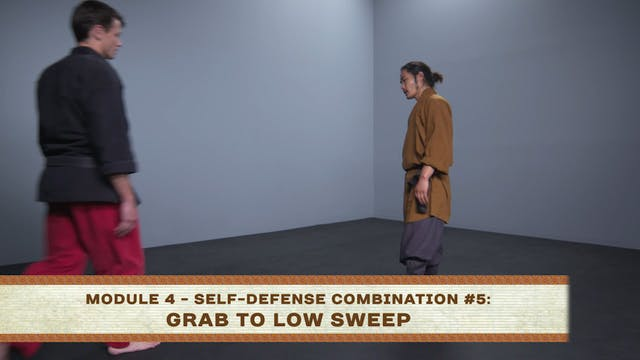 Self-Defense Combination #5: Grab to ...