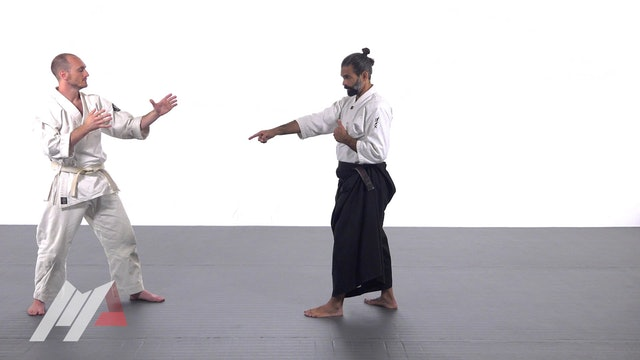 Guillermo Gomez - Aikido Basic Deflection