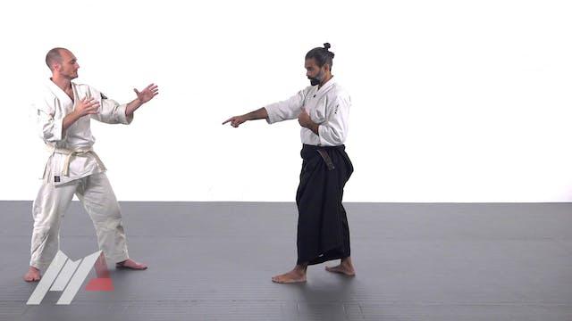 Guillermo Gomez - Aikido Basic Deflec...
