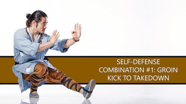 Self-Defense Combination #1: Groin Kick to Takedown