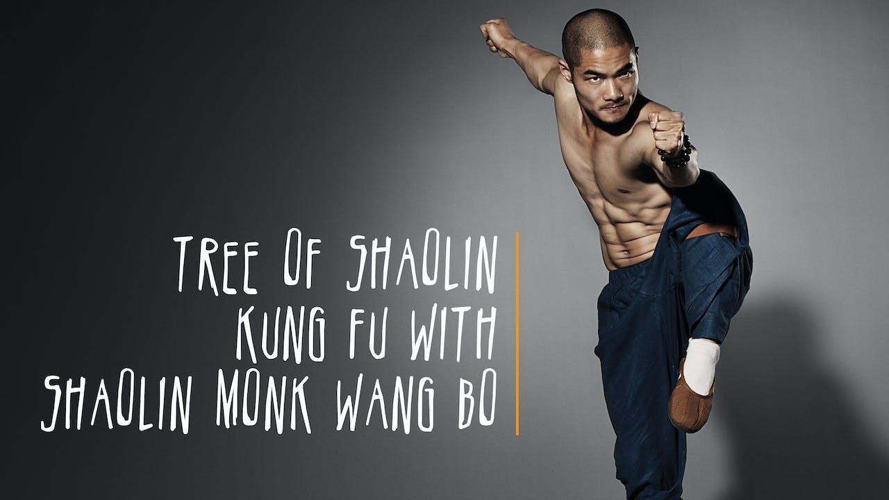 Tree of Shaolin Kung Fu With Shaolin Monk Wang Bo