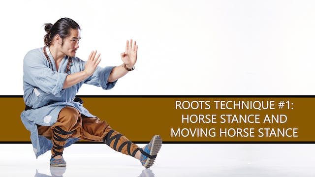 Roots Technique #1: Horse Stance and Moving Horse Stance