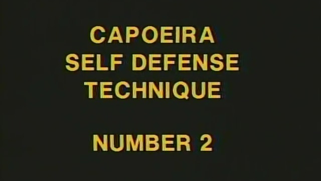 Reis and Santos - Self-Defense Techniques