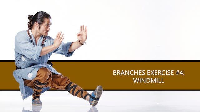 Branches Exercise #4: Windmill