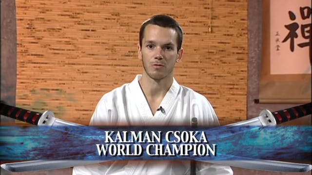 Kalman Csoka - Traditional Sword Form 1