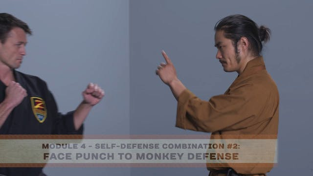 Self-Defense Combination #2: Face Pun...