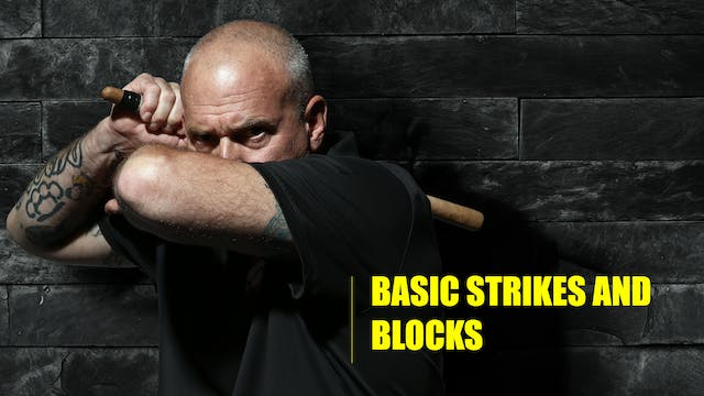 3 Basic strikes and blocks