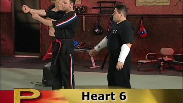 Scott Rogers - Pressure Point Knockouts and Simple Attacks