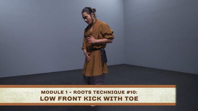 Roots Technique #10: Low Front Kick W...