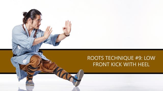 Roots Technique #9: Low Front Kick Wi...