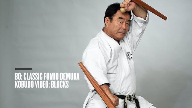 Bo: Classic Fumio Demura Kobudo Video: Blocks