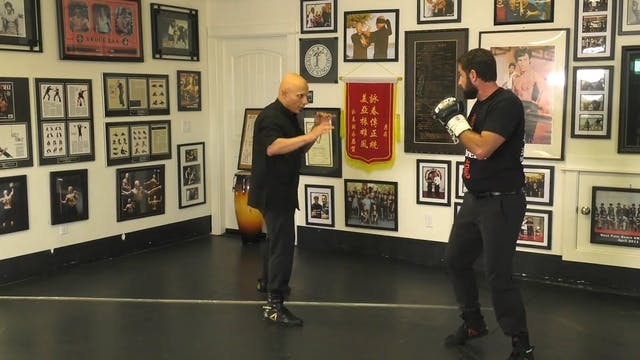 040 Elbow Destructions (During) vs Punches & Kicks - Guide & Smash