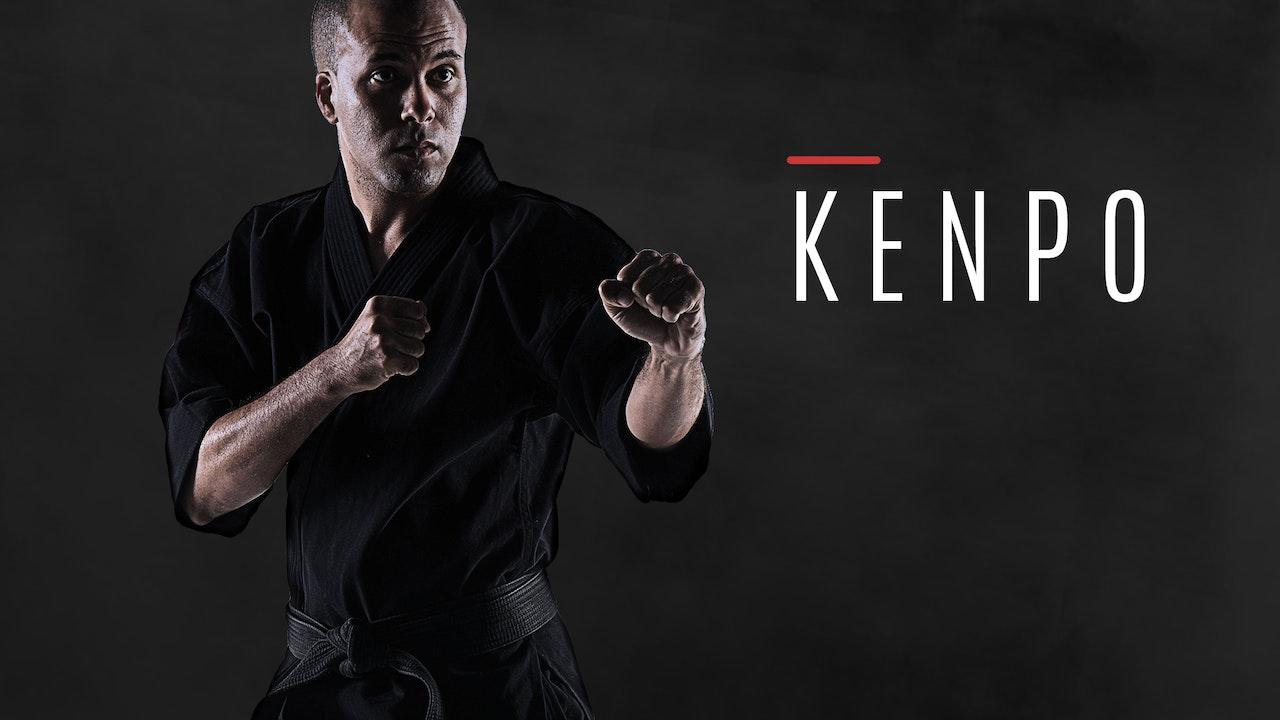 Kenpo/Kempo