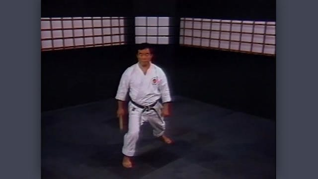 Nunchaku: Classic Fumio Demura Kobudo Video Review: Stances