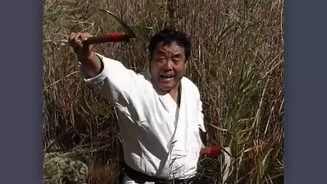 Kama: Classic Fumio Demura Kobudo Video Introduction to the Kama