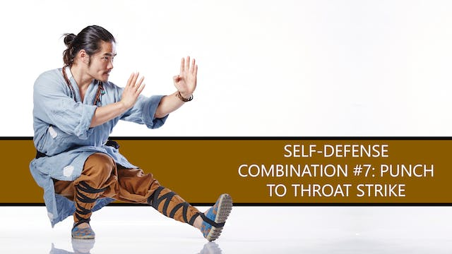 Self-Defense Combination #7: Punch to...