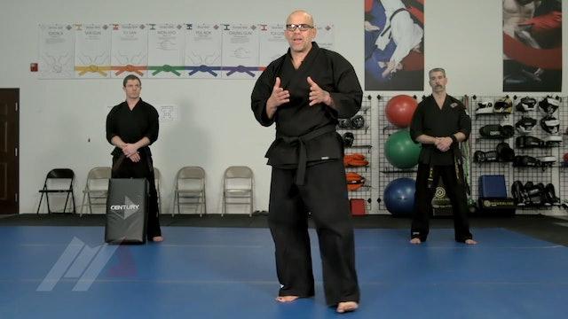 John Hackleman - Linear Kicks on the Shield