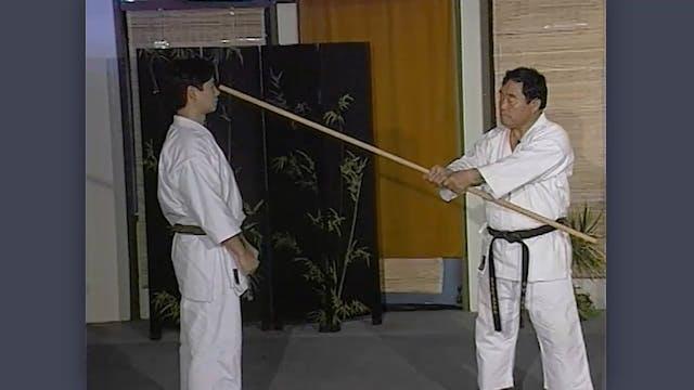 Bo: Classic Fumio Demura Kobudo Video Grips