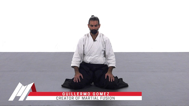 Guillermo Gomez - Why Aikido