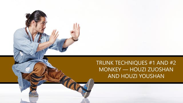 Trunk Techniques #1 and #2 Monkey — H...
