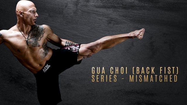 Gua Choi (Back Fist) Series - Mismatched