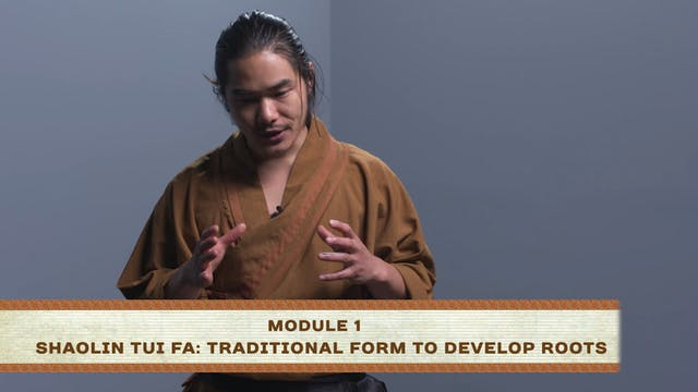 Shaolin Tui Fa: Traditional Form to D...