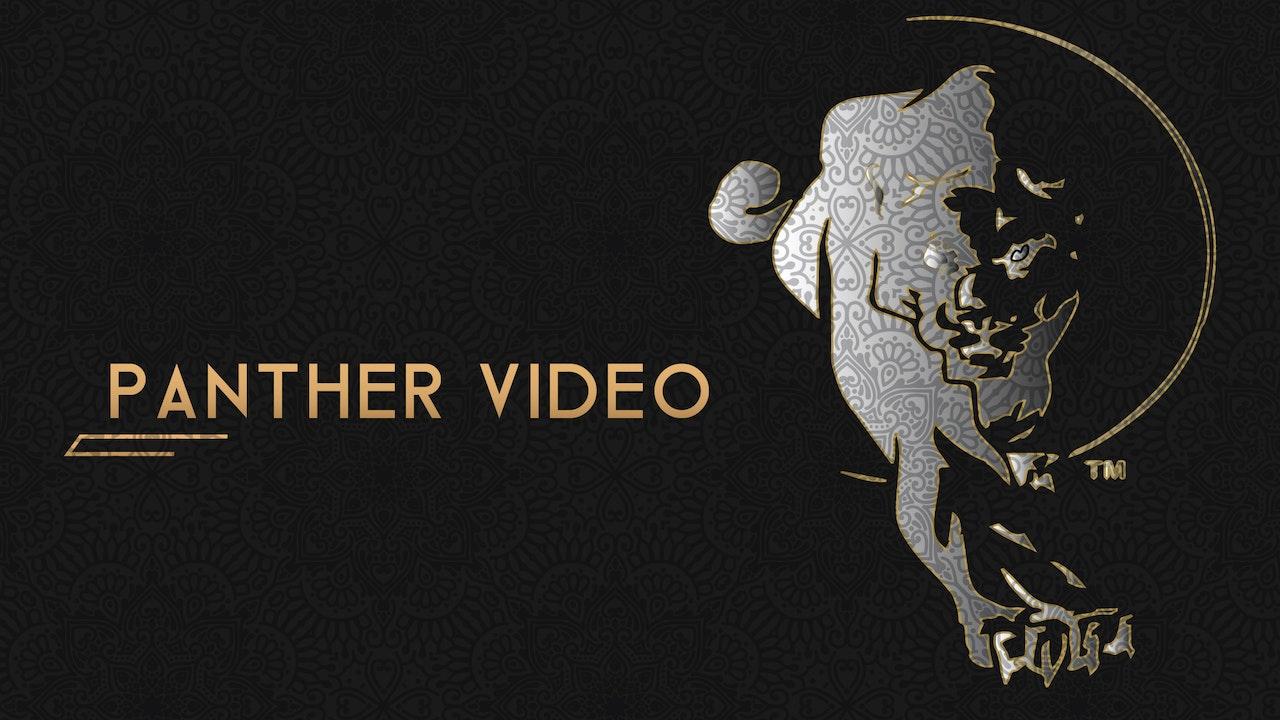 Panther Videos