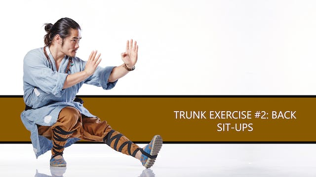 Trunk Exercise #2: Back Sit-Ups
