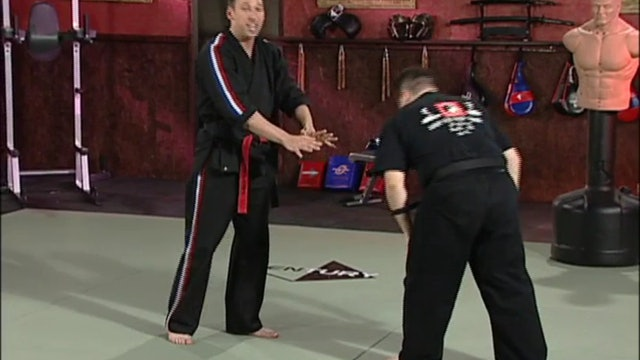 Scott Rogers - Pressure Points and Grappling