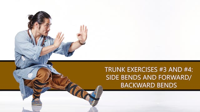 Trunk Exercises #3 and #4: Side Bends and Forward/Backward Bends