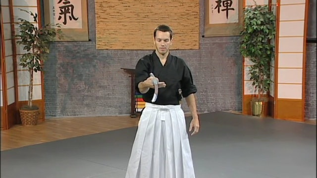 Kalman Csoka - Creative Sword Manuevers and Techniques