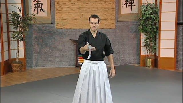 Kalman Csoka - Creative Sword Manueve...