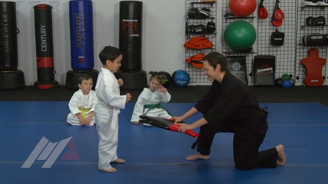 Melody Shuman - Ninja Kicks
