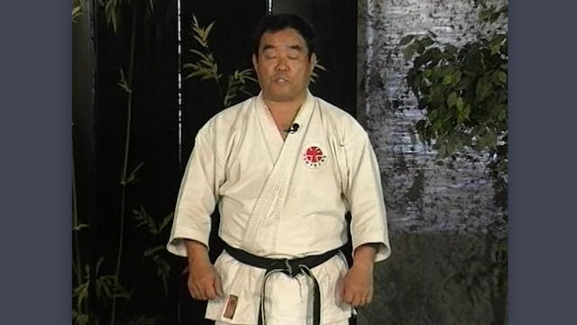 Tonfa: Classic Fumio Demura Kobudo Video Karate Blocks and Tonfa Blocks