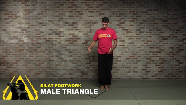Silat Footwork: Male Triangle