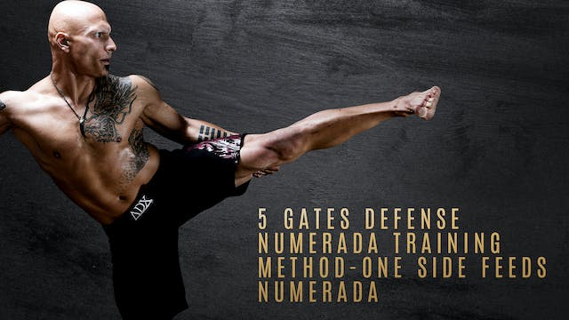 5 Gates Defense - Numerada Training Method - One Side Feeds - Numerada