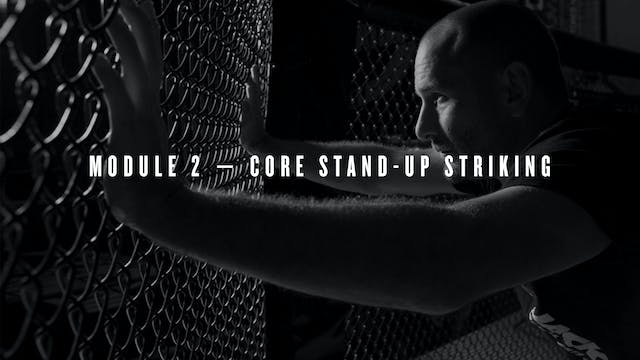 Module 2 — Core Stand-Up Striking