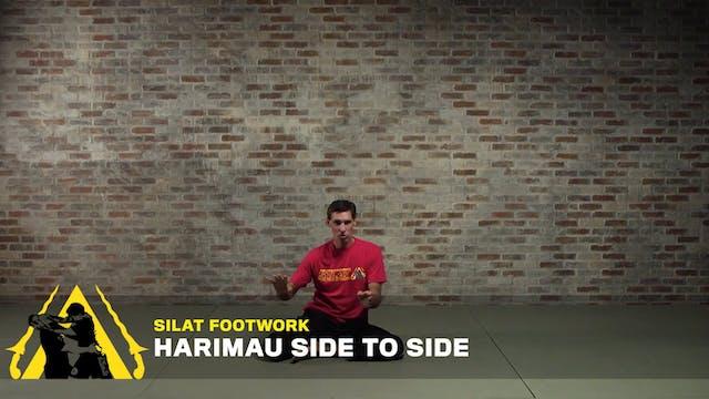 Silat Footwork: Harimau Side to Side